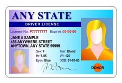 SecuringIndustry com - Printing advances spur rise of US fake ID mills
