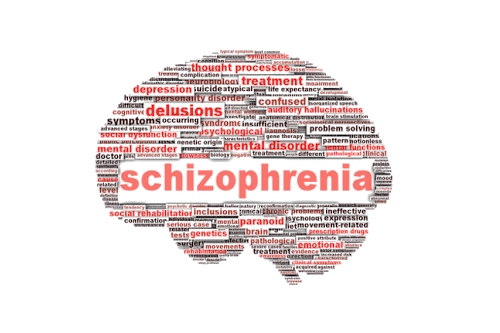 Schizophrenia: A Case Study. - video dailymotion