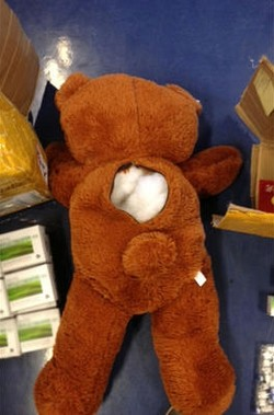 Stuffed bear used to smuggle illicit medicines